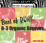 Ron Levy: Best of B-3 Organic Grooves